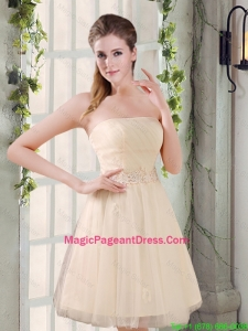 Strapless Appliques 2016 New Pageant Dress in Champagne