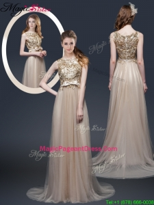 Luxurious Brush Train 2016 Pageant Dresses with Appliques and Bowknot