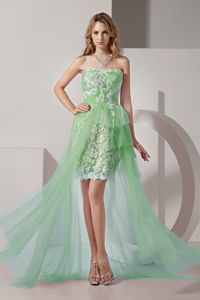 Apple Green High-Low Strapless Pageant Dress for Girls with Appliques in Brantford