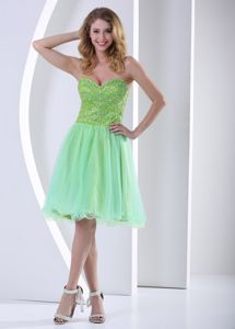 Sweetheart Pageant Dresses for Miss World in Yellow Green in Buckeye