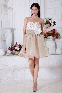 A-line Sweetheart Mini-length Organza Interview Pageant Suits with Appliques in Acton