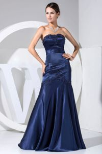 Appliqued Miss Universe Pageant Dress with Beading in Navy Blue in Joliet
