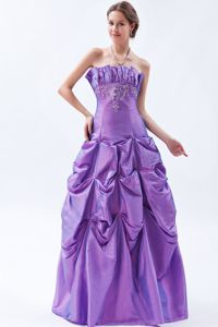 Purple Miss Universe Pageant Dress Decorated Embroidery with Pick Ups