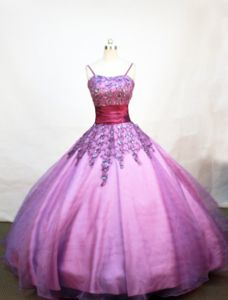 Lovely Appliques and Straps Little Girls Pageant Dresses in Purple from Healdsburg
