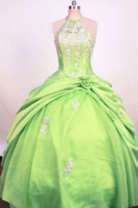 Perfectly Looking Lime Green Halter Appliques Girls Dresses For Pageant