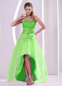 Spring Green High-Low Strapless Sequin Pageant Dress with Flower in Thunder Bay