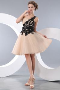 Princess One Shoulder Chiffon Natural Beauty Pageants Dress in Champagne