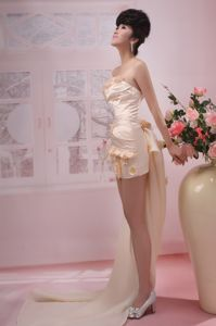Champagne Strapless Taffeta Dresses For Pageants with Watteau Train