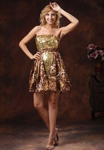 Leopard Sequins 2013 Brown Wholesale Pageant Girl Dresses in Mini-length from Newport