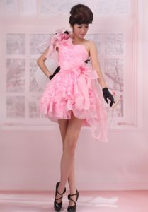 Mini-length One Shoulder Lace Pink Pageant Dresses for Girls with Flowers