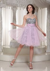 Organza Zebra Sweetheart Miss Universe Pageant Dresses in Urbana IL