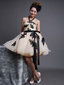 Appliqued Strapless Miss Mississippi Pageant Dress in Champagne in Albion