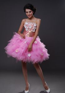 Strapless Pink Handle-Made Flowers Dresses for Pageants In Nj in Albany