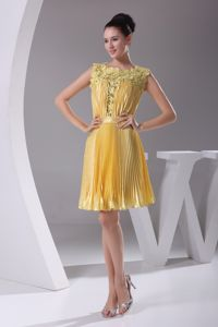 Lace Scoop Style Pageant Dresses with Ribbon and Pleats in Yellow in Dewey